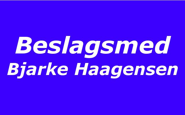 Bjarke Haagensen